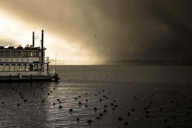 Rotorua un paisaje en ebullición en Nueva Zelanda