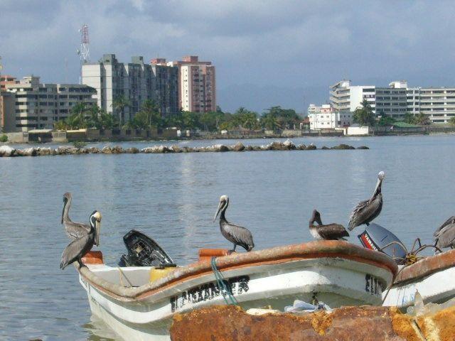 Las Playas de Higuerote. Cuáles son las más visitadas